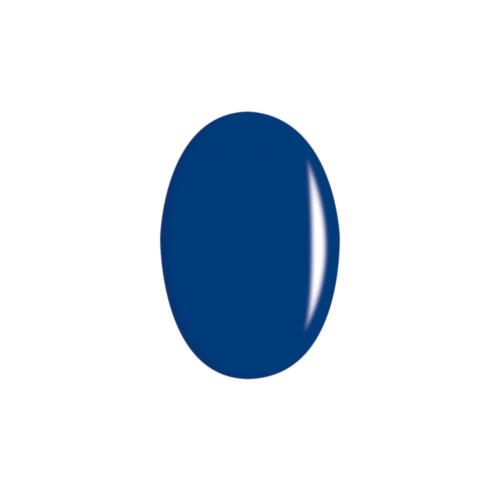 28. Bleu volubilis